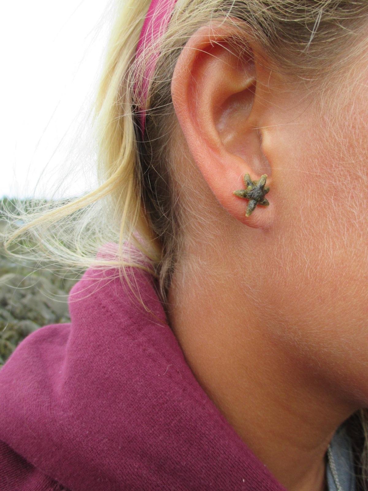Baby starfish earring